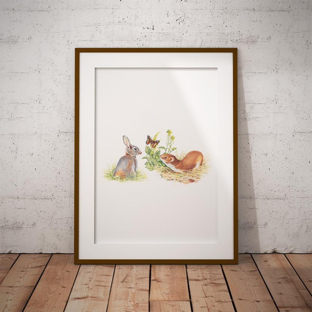 Rabbit and Stoat Wall Art Print - Countryman John