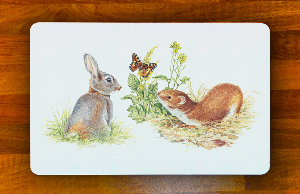 Rabbit and Stoat Melamine Placemat
