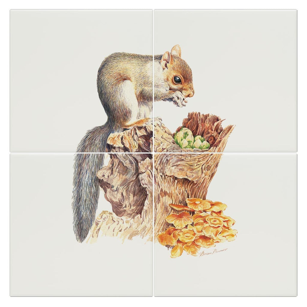 Grey Squirrel Tile - Countryman John