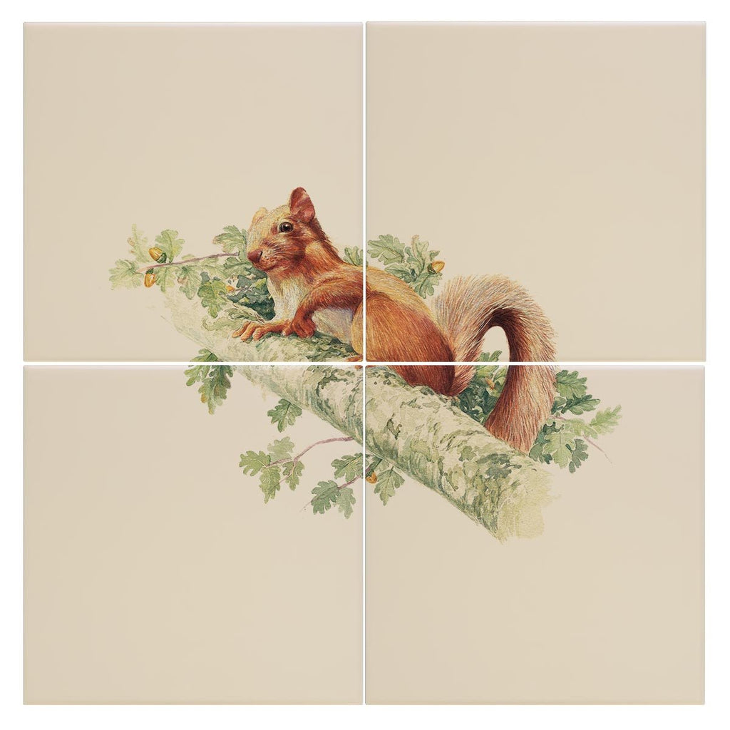 Red Squirrel Tile - Countryman John