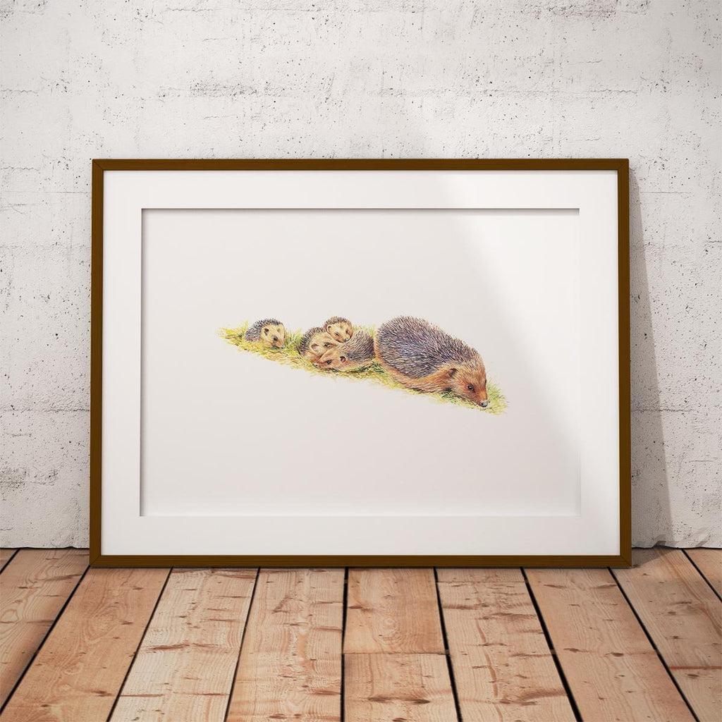 Hedgehogs Wall Art Print - Countryman John