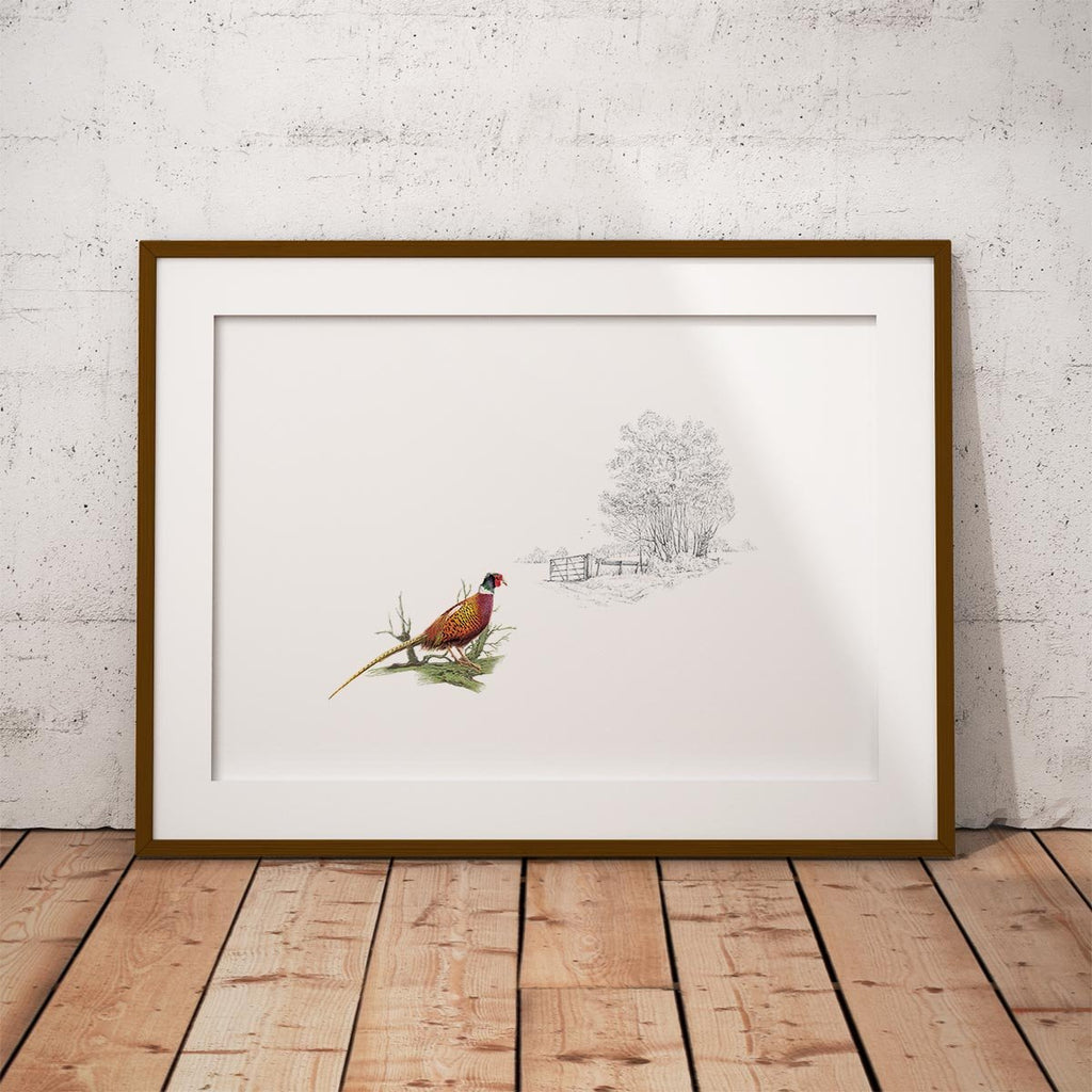 Pheasant Alone Wall Art Print - Countryman John