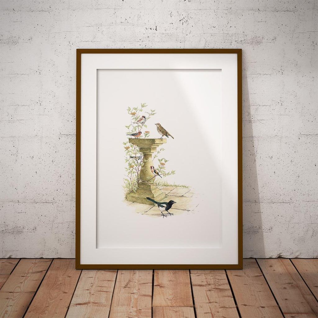 Bird Bath Wall Art Print - Countryman John