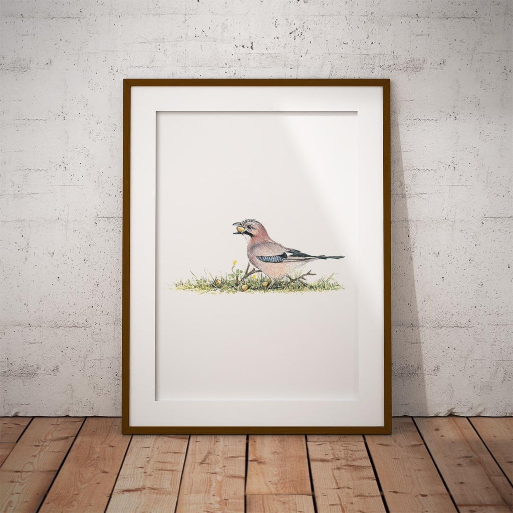Jay Wall Art Print - Countryman John