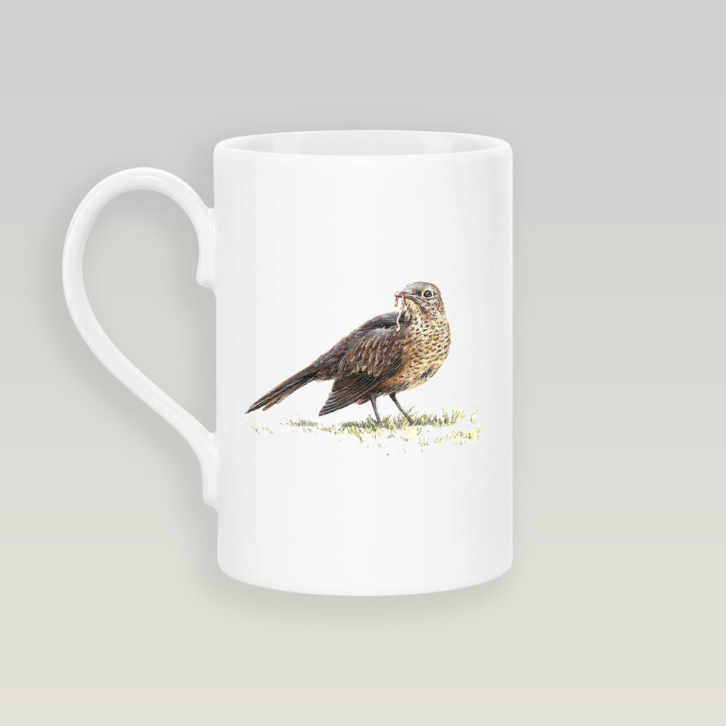 Song Thrush Slim Mug - Countryman John