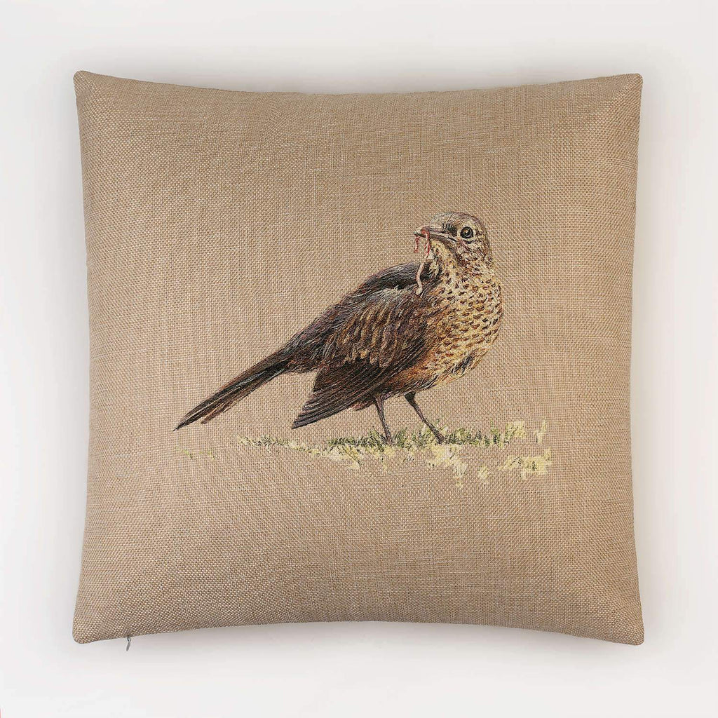 Song Thrush Cushion - Countryman John