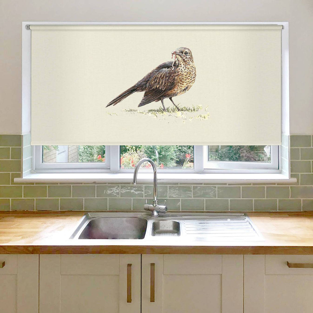 Song Thrush Roller Blind