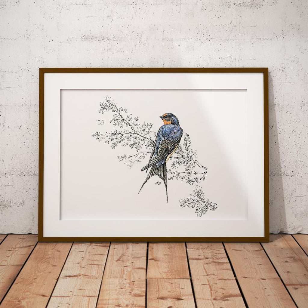 Swallow Wall Art Print - Countryman John
