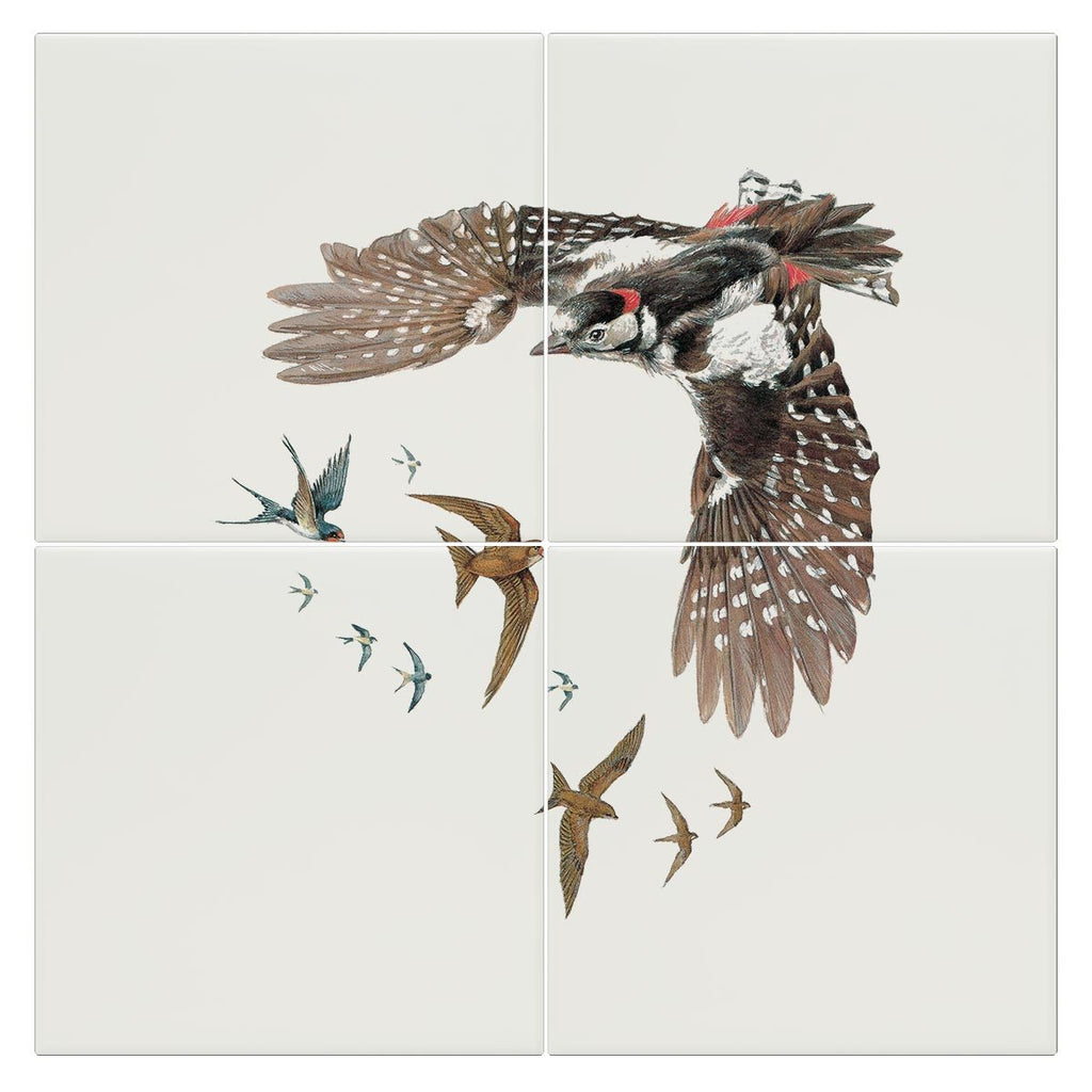 Woodpecker Swallows and Swifts Tile - Countryman John