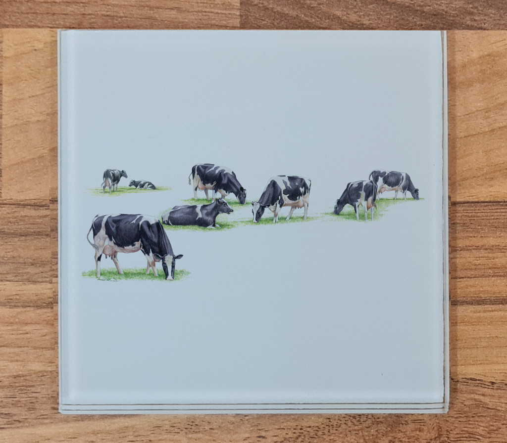 Multiple Grazing Cows Glass Coaster
