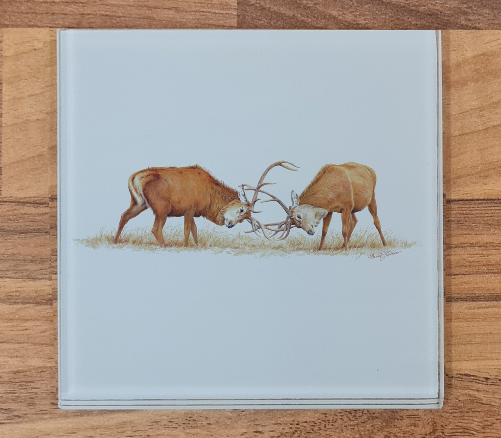 Duelling Stags Glass Coaster