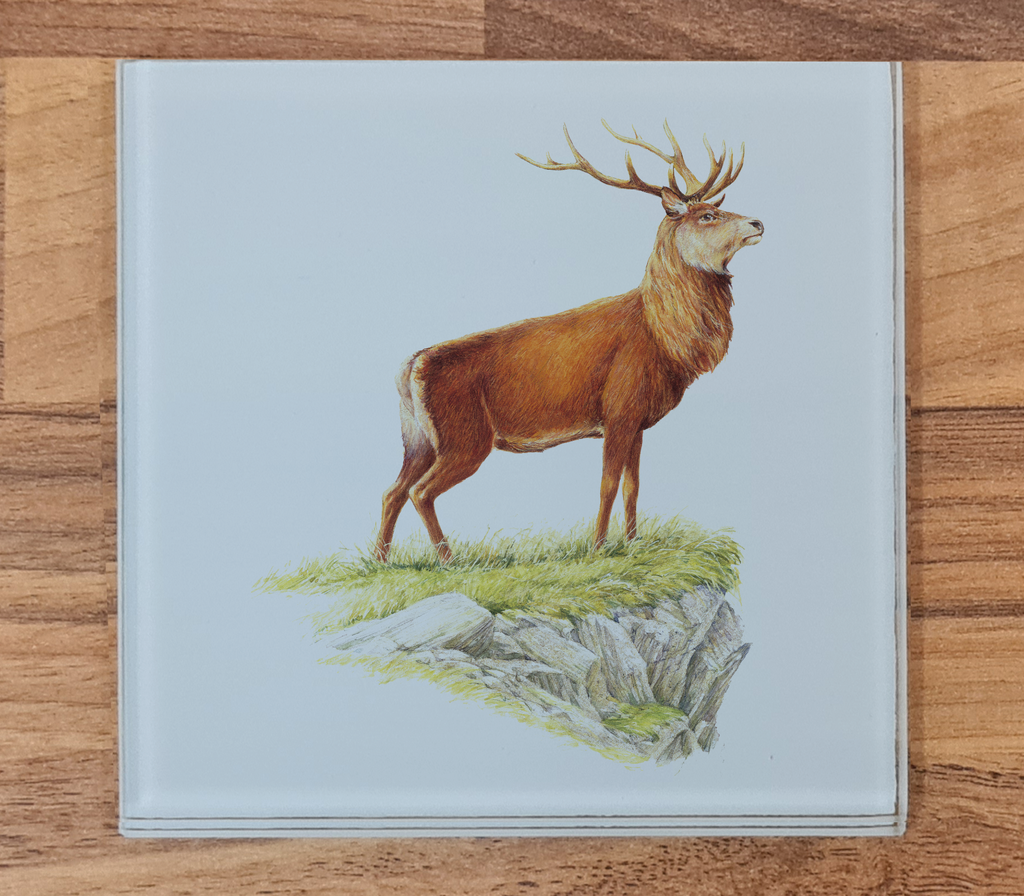Glorious Stag Glass Coaster