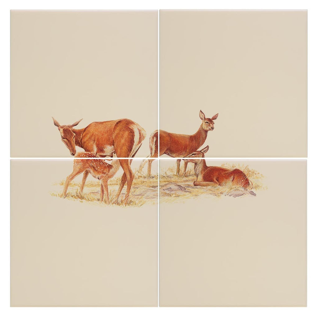 Red Hind with Calf Tile - Countryman John