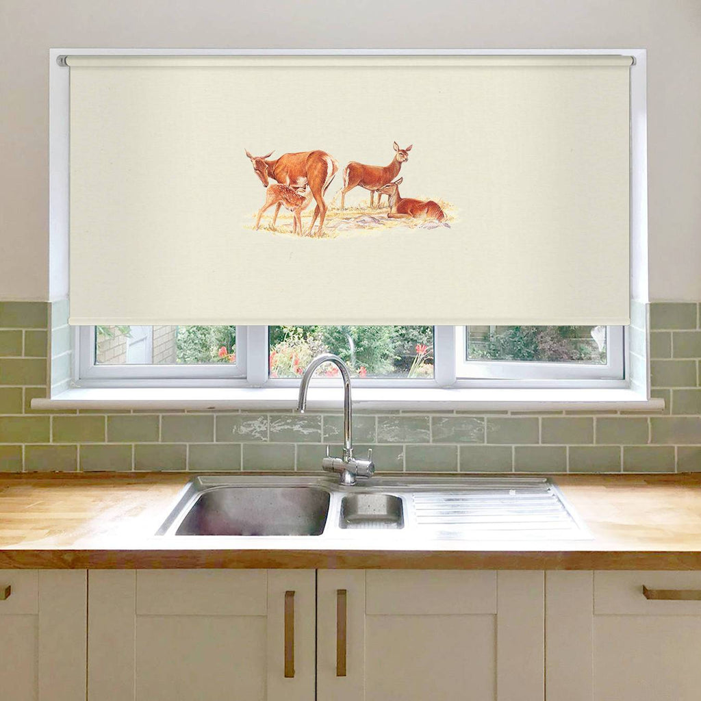 Red Hind with Calf Roller Blind