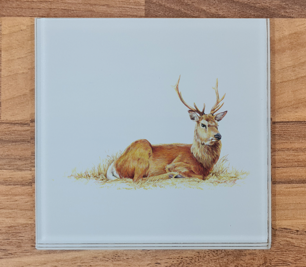 Resting Stag Glass Coaster