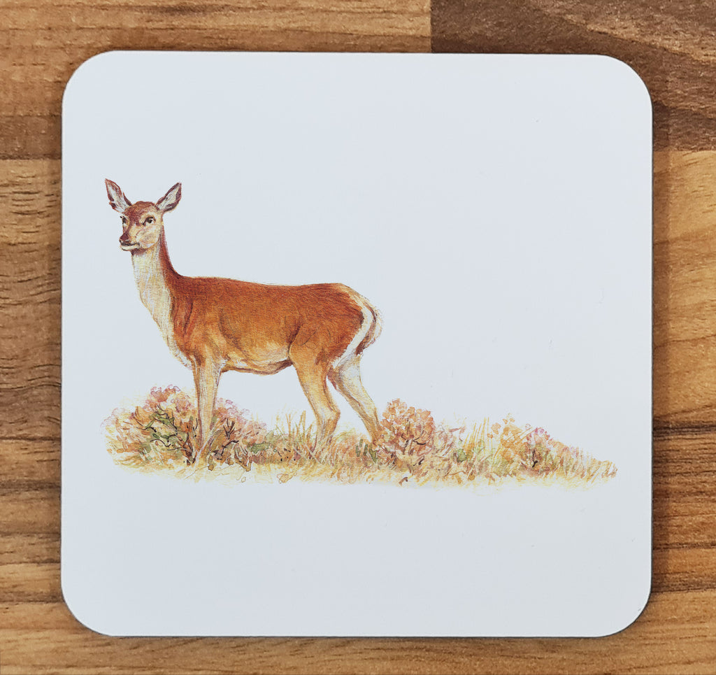 Red Calf Doe Melamine Coaster