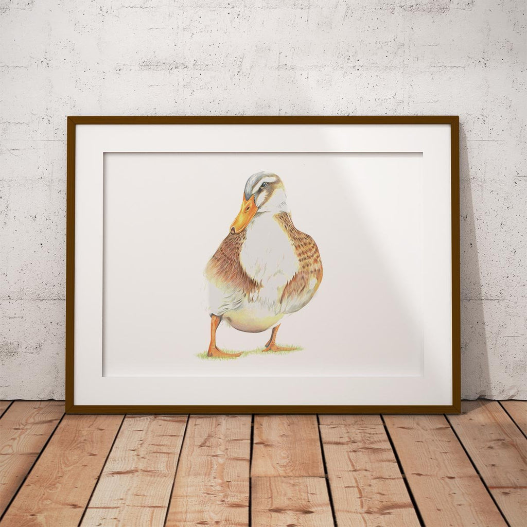 Duck Wall Art Print - Countryman John