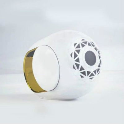 GOLDEN SPEAKER – High-End Wireless Speaker -108 dB - hifivestore-c