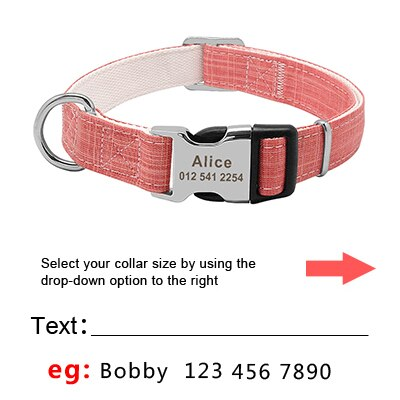 Fashion Nylon Dog Collar