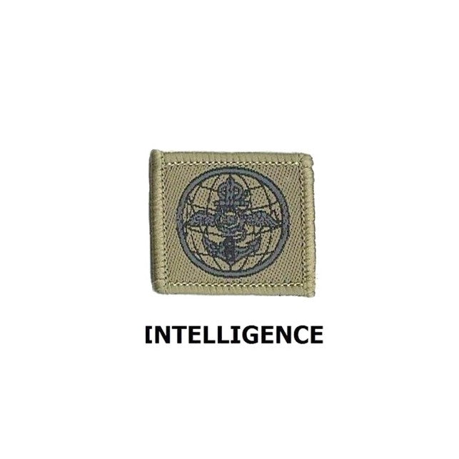 INTELLIGENCE COLLAR Army No.4 Badge