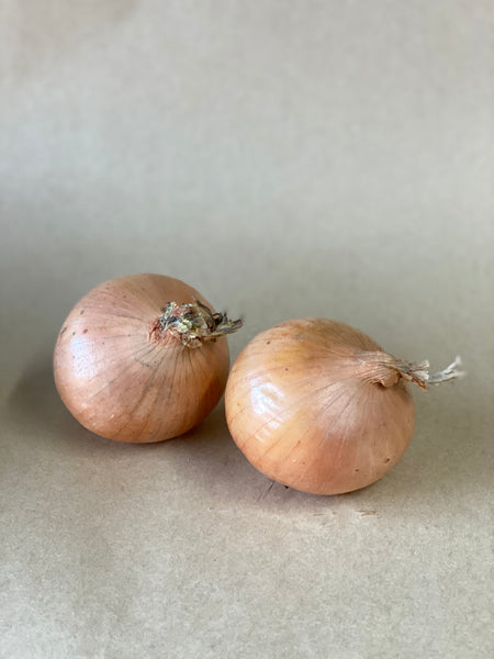 Yellow Onion (1 Kilogram)