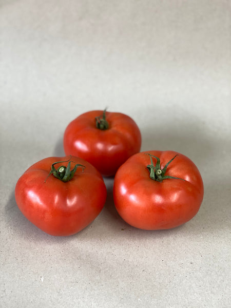 Beef Tomatoes (Each)