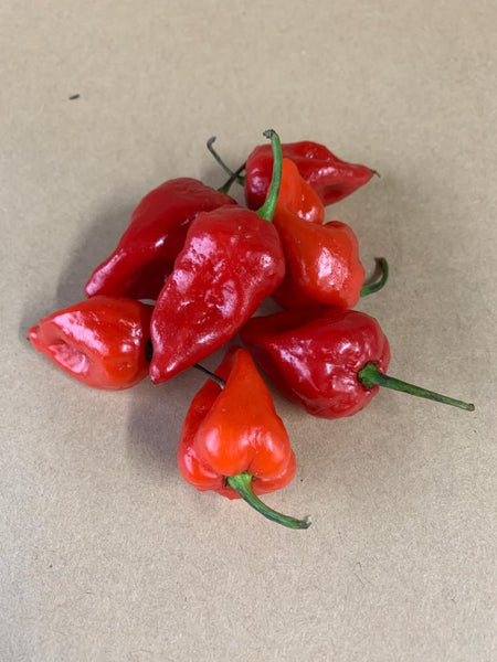Scotch Bonnet (100grams)