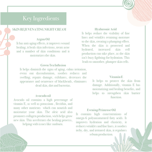Key ingredients of the the anti-aging skin rejuvenating night cream