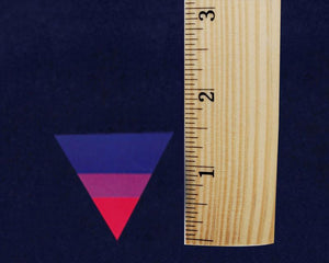 Triangle Bisexual Pride Stickers (250 Stickers) - Fundraising For A Cause