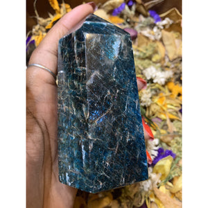 Apetite Obelisk Towers