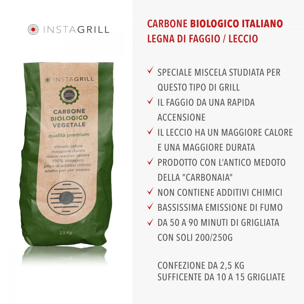 CARBONE VEGETALE PER BARBECUE INSTAGRILL