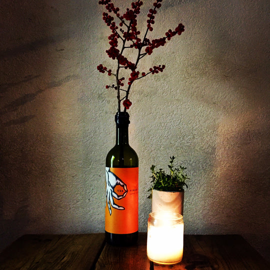 Nutkin wine bar pops up in Haggerston