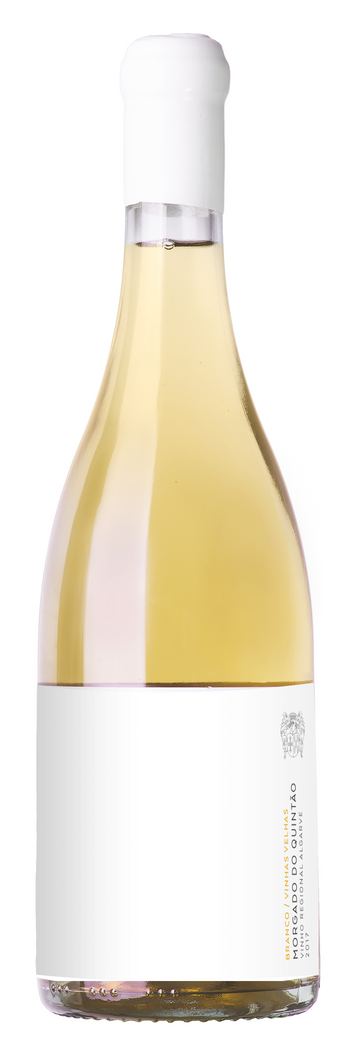 Morgado do Quintão Branco 2018 - Red Squirrel Wine