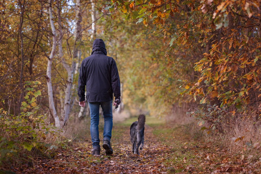 A walk in the woods can help you take a deeper dive into finding your inner self.