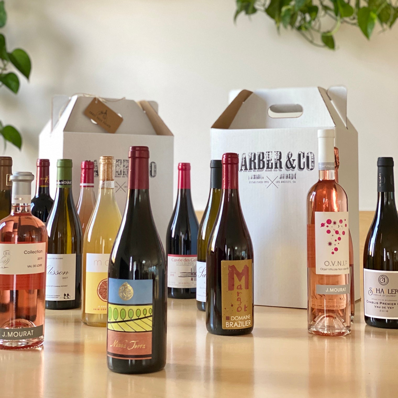 Custom Curated Box of 12 Wines
