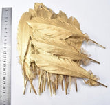 Golden Feathers