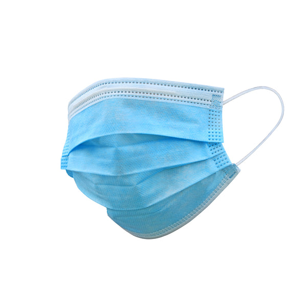 1 case (2000pcs) Disposable 3-Ply Earloop Face Mask