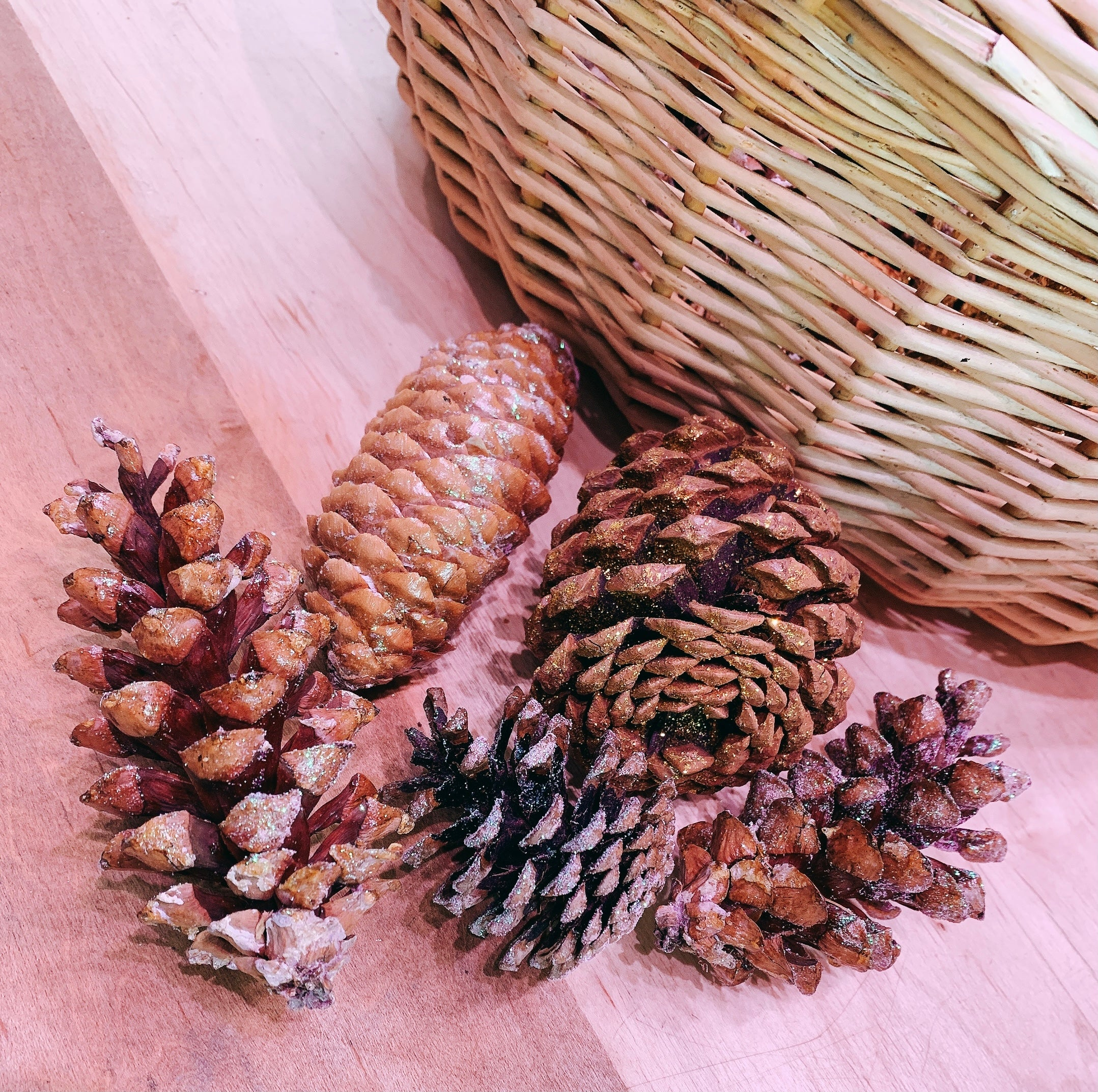 HAND PAINTED PINECONES