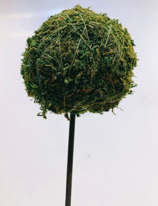 KOKEDAMA BALL ON STICK