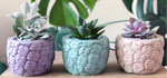 Load image into Gallery viewer, PINEAPPLE CEMENT POT