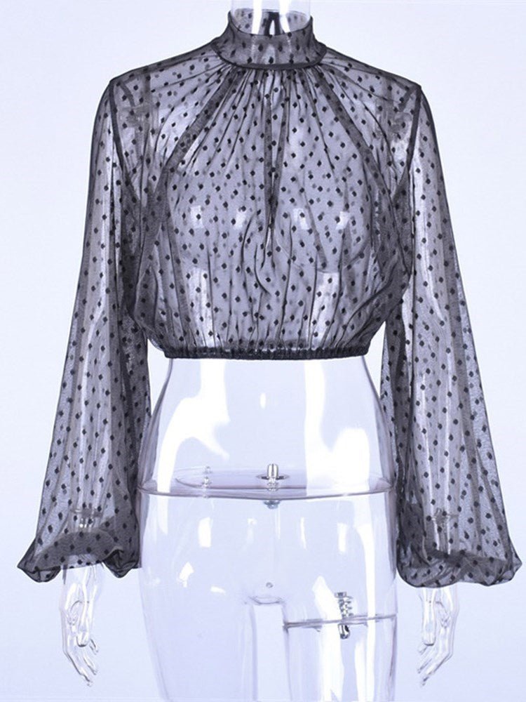 Lantern Sleeve See-Through Polka Dots Long Sleeve Short Blouse