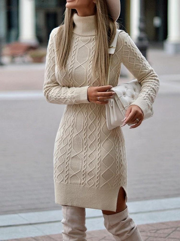 Turtleneck Long Sleeve Above Knee Casual Plain Dress