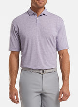 Load image into Gallery viewer, Peter Millar- performance polo- plum stripe