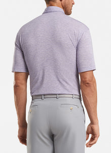 Peter Millar- performance polo- plum stripe