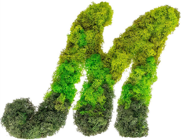 [Preserved Monogram Initials Moss Letter Art Design & Decor Wall Arrangement ]