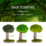 [ Moss Tree ] Natural Preserved Moss & Branch Decor