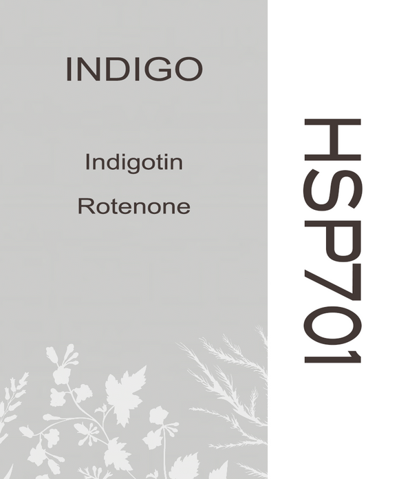 05HSP701 INDIGO PLANT - HERB SOIL PAINT