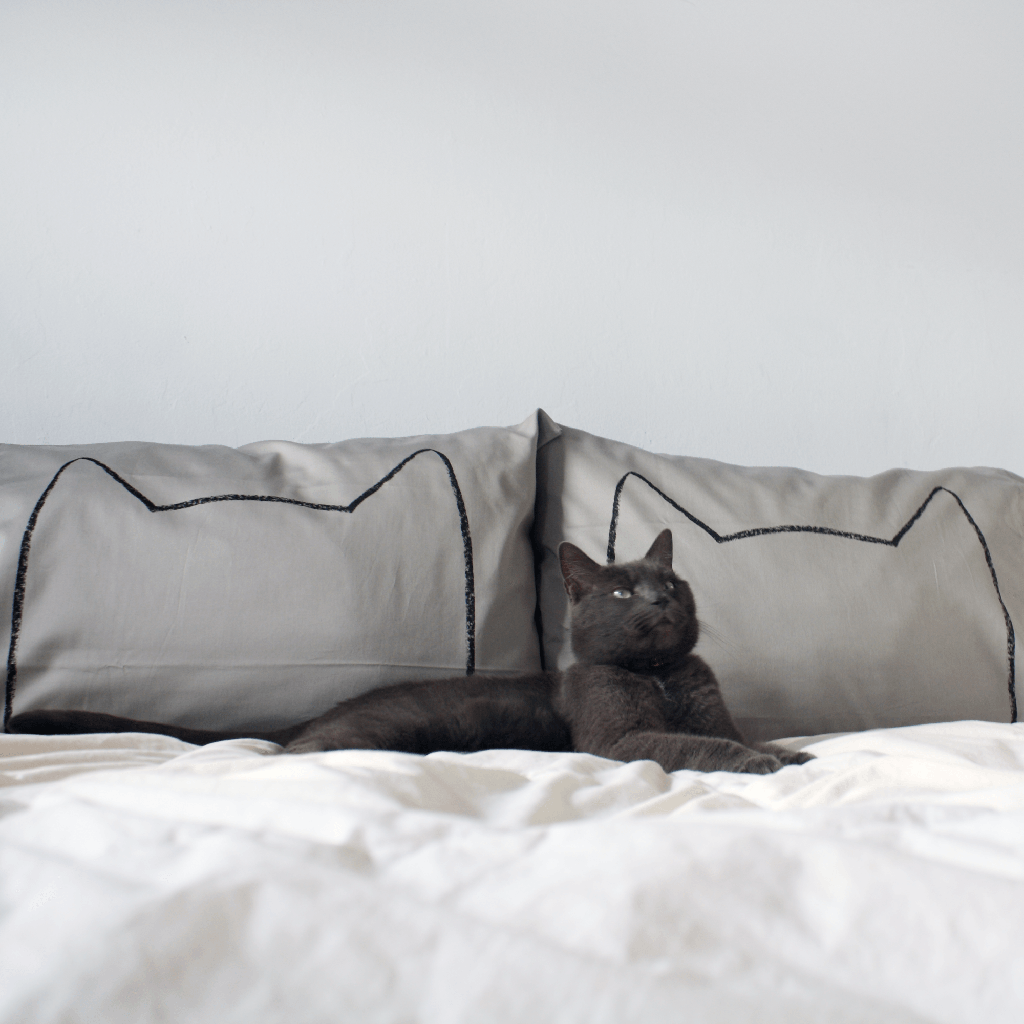 Gray Cat Nap Pillowcases - Xenotees