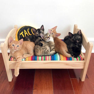 Taco Cat Bed Pillow Kicker Toy