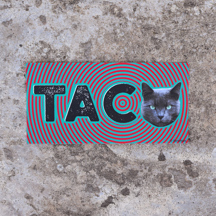 Taco Cat Bumper Sticker by Xenotees